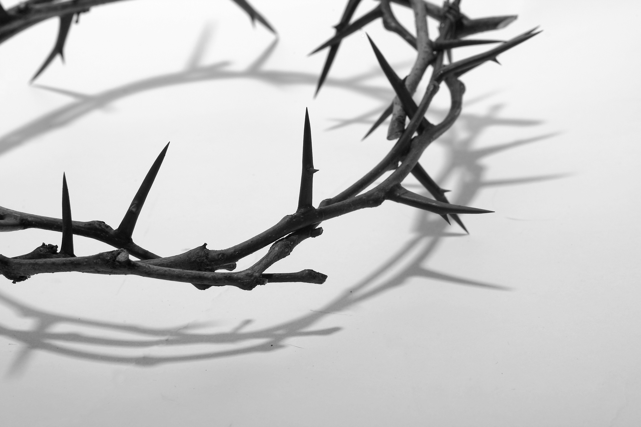 A crown of thorns representing Christian suffering
