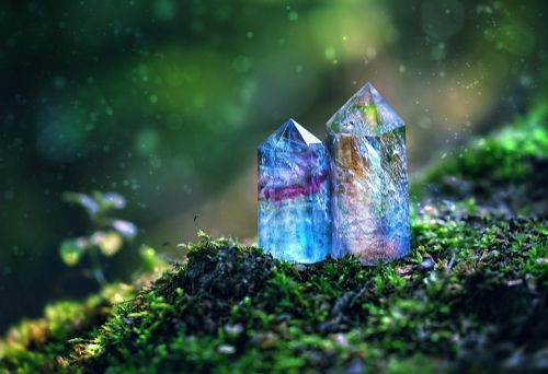 A crystal growing in the forest