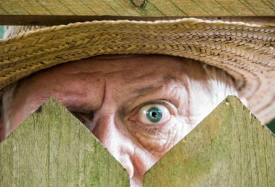 An envious neighbor peering over a fence