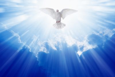A dove flying from Heaven on Pentecost