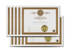 Handfasting Ceremony Certificate 10 Pack