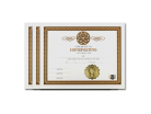 Handfasting Ceremony Certificate 3 Pack