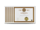 Handfasting Ceremony Certificate 5 Pack
