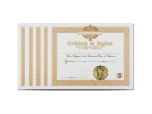 Holy Baptism Certificate 5 Pack