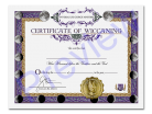 Wiccan Certificate Single Pack