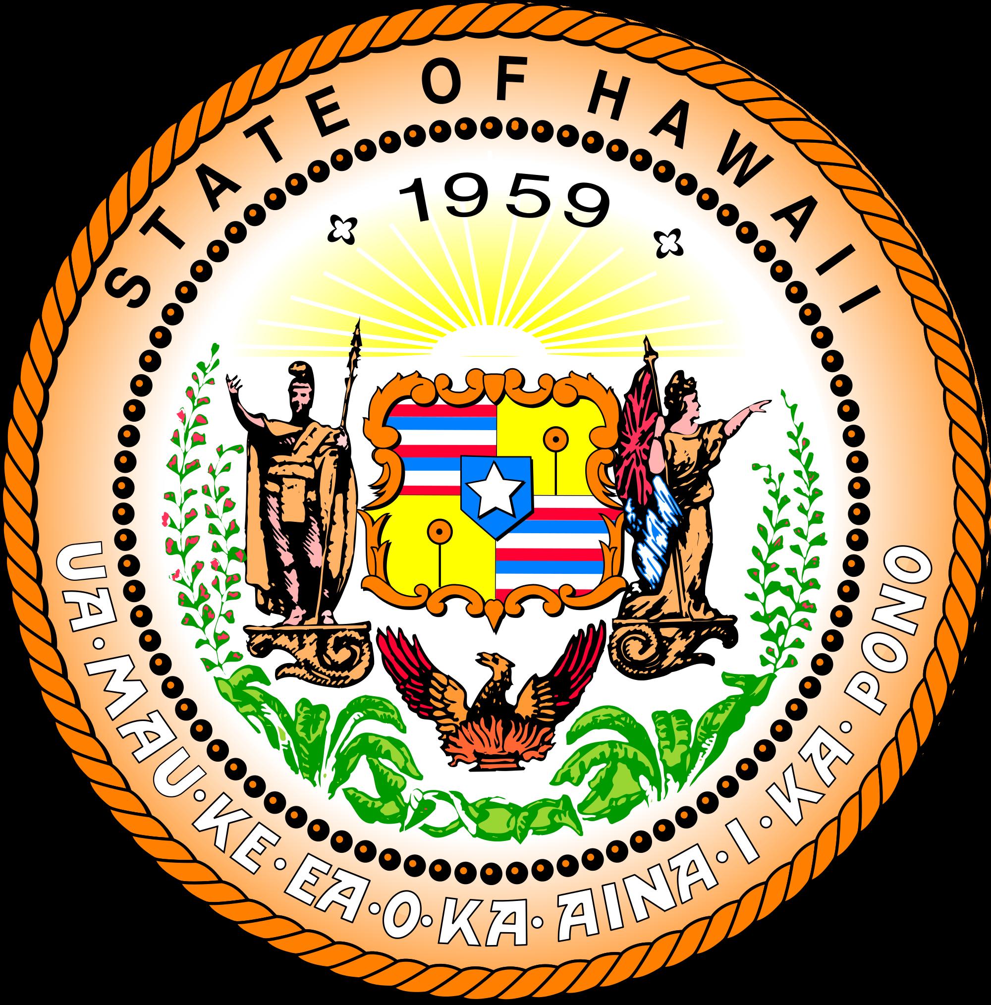 Hawaii wedding laws universal life church biocorpaavc Choice Image
